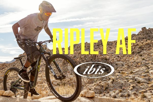 First Ride Review: 2021 Ibis Ripley AF